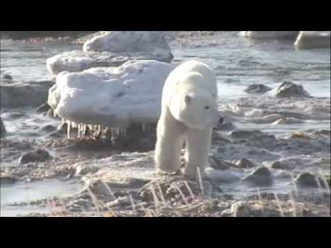 Seal River (Churchill) -IV