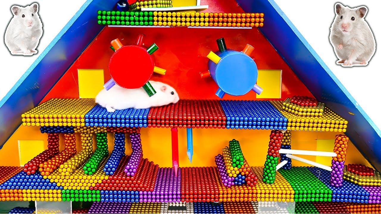 DIY - Build Amazing Pyramid Maze For Hamster Pet With Magnetic Balls (Satisfying) - Magnet Balls