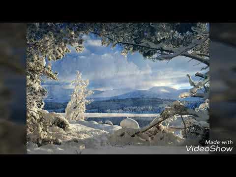 Зима ( Красивые фото )
