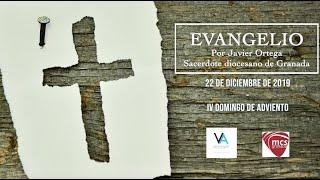 Evangelio del domingo 22 de diciembre 2019. IV Domingo de Adviento.