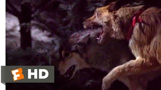 Look Who's Talking Now (1993) - Dog vs. Wolf Scene (9/10)   Movieclips