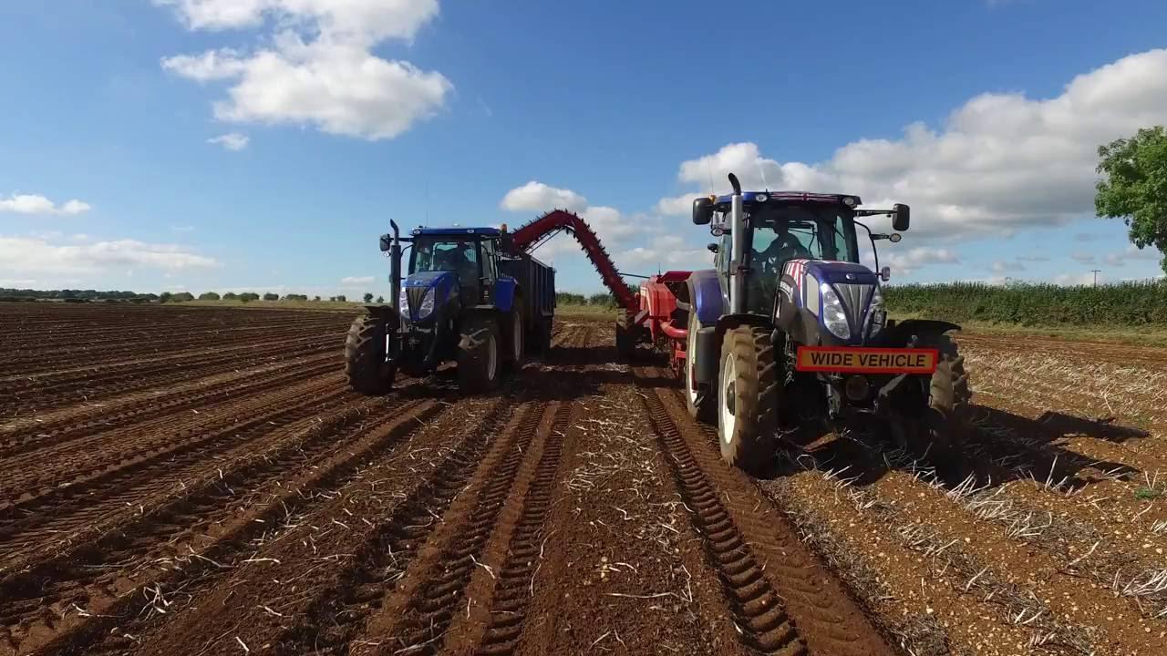 Image result for potato harvest uk