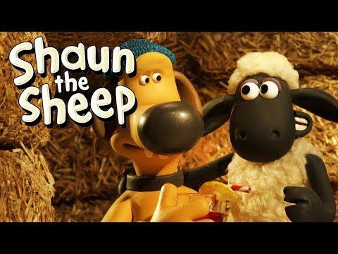 Perang Perebutan Wilayah [Turf Wars] | Shaun the Sheep | Full Episode | Funny Cartoons For Kids