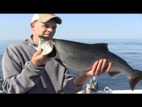 Lake Michigan Salmon Charter Fishing Trip