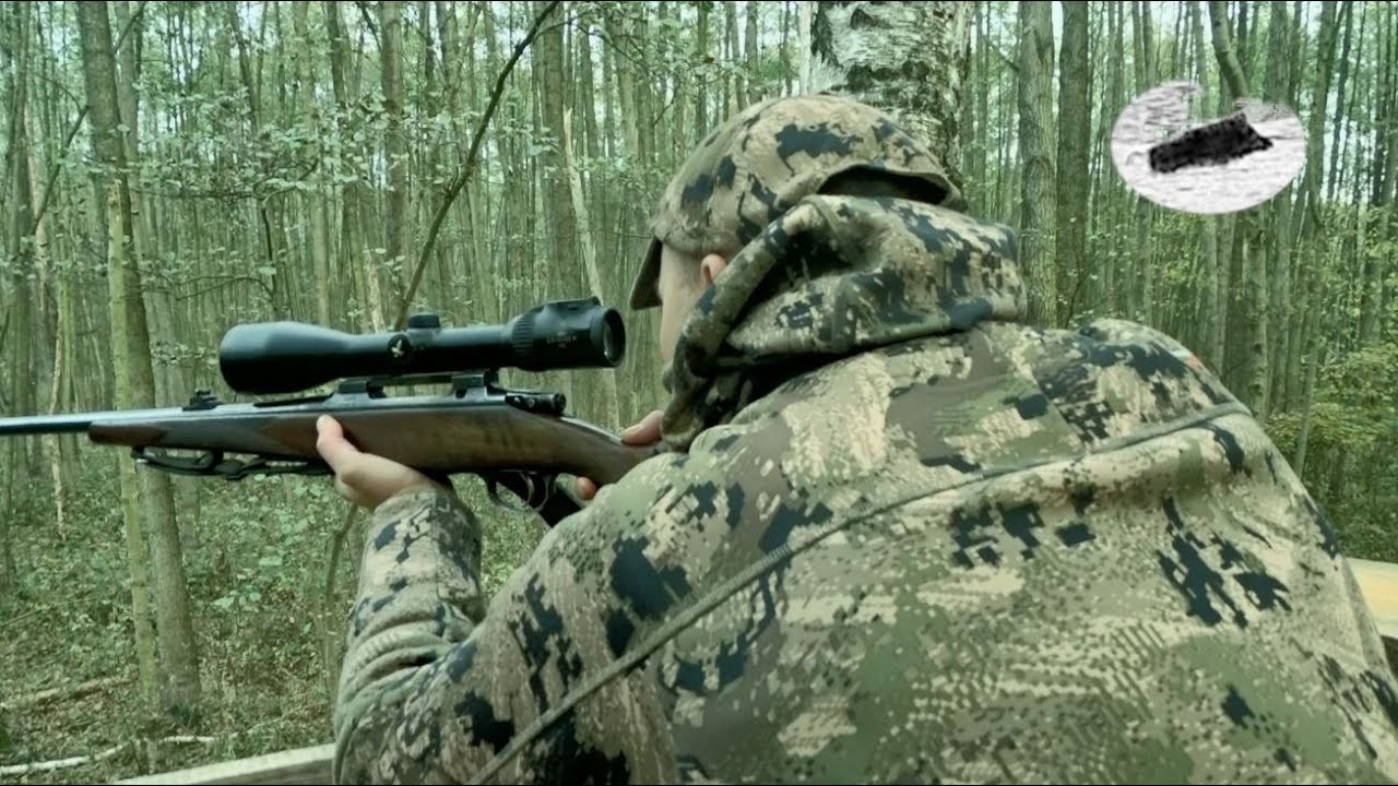 Hunting in October - red deers and wild boars