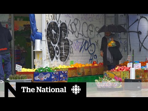 CBC News: The National: The factors influencing Toronto's COVID-19 hot spots