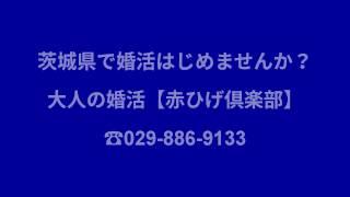 大人の結婚相談所【赤ひげ倶楽部】が 1周年記念のキャンペーン中!! 茨...