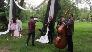 Свадьба в Серебряном Бору