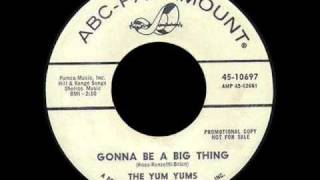 The Yum Yums - Gonna Be A Big Thing