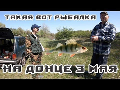 🎣 Рыбалка на Донце в начале мая, Большой Суходол+Давидо-Никольское | кажется рыба в отпуске 🏖