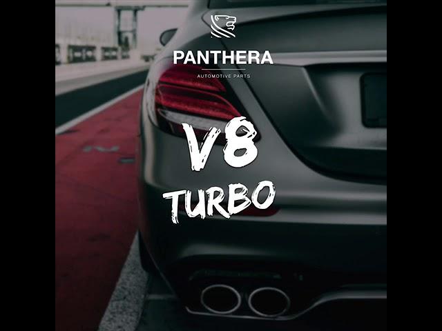 PANTHERA LEO Active Sound 4.0 - V8 Turbo