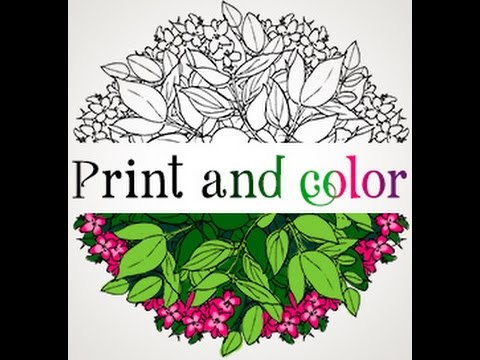 amazingly-exquisite-free-printable-coloring-pages-of-flowers