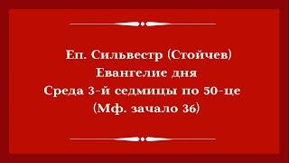 Еп. Сильвестр (Стойчев). 24.06.2020. Евангелие дня с толкованием