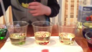 Oil+Water Science for Kids