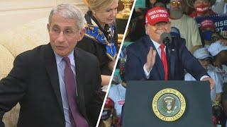 Trump Suggests He Will Fire Dr. Fauci After Election