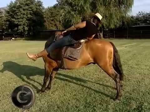 Valéria Maciel em treinamento na Esquadra Equestre do Chile!