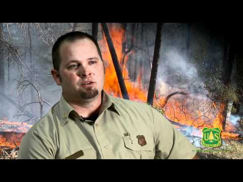 Wildland Firefighter in the US Forest Service, Shasta-Trinity National Forest