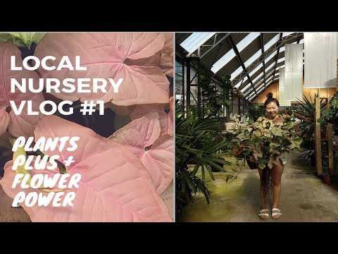 PLANT VLOG #1🌿 Local Nurseries Tour | Sydney | Come Plant Shopping With Me!