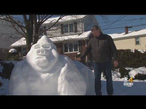 The Mo & Sally Show - A Massachusetts Family Builds Snow Gorilla