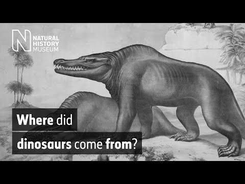 Where did dinosaurs come from? | Natural History Museum