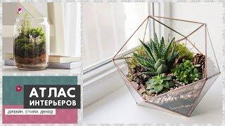 Флорариум своими руками или cад в бутылке. 70 идей как сделать цветочный террариум