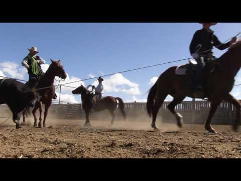 Angus TV: Ranching Matters
