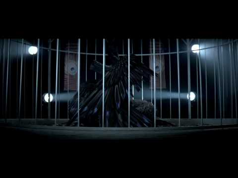 Miley Cyrus - Can't Be Tamed - Music Video (HD)