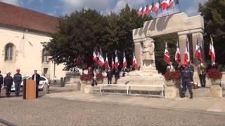 71ème anniversaire de la libération - Édition 2015 à Avallon (89)
