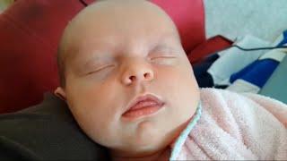 #Pklaugh #funnyvideos #AFV                        Cutest Babies Newborn In The World Hilarious Fails