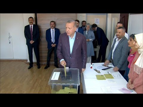 Istanbul mayoral election: President Erdogan casts vote | AFP