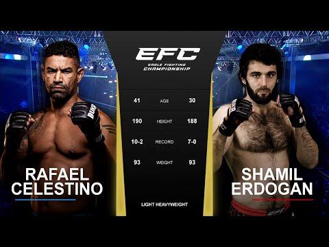 Борец против мастера БЖЖ | EFC 42: Шамиль Эрдоган - Рафаэль Селестино