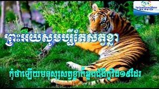 ព្រះអីយ!សត្វខ្លាញីមួយក្បាលបានធ្វើតេស្ដរកឃើញជំងឺកូវីដ-១៩ដែរ|Khmer News Sharing