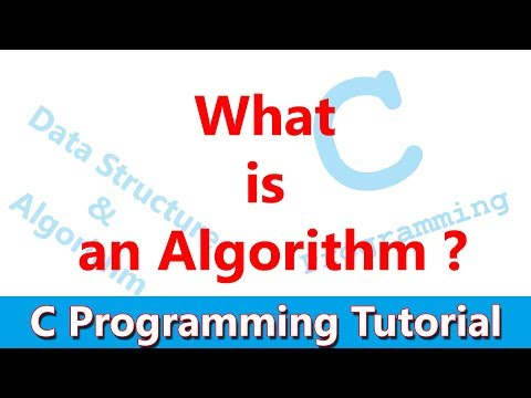 #26 What is an algorithm? Its Correctness and efficiency