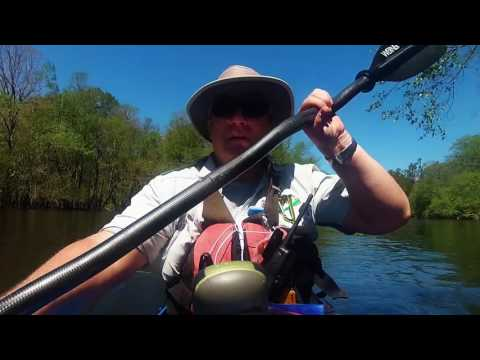 Kayak Camping on the Edisto River, SC