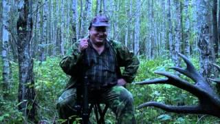 Охота на трофейного оленя в Беларуси видео
