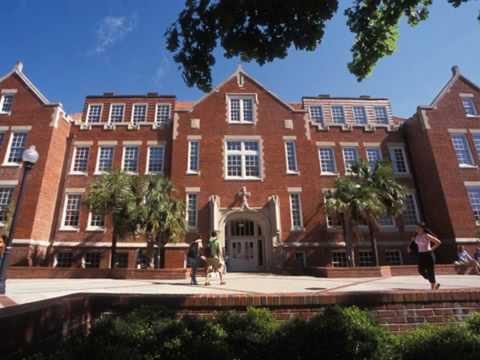 #2 University of Florida