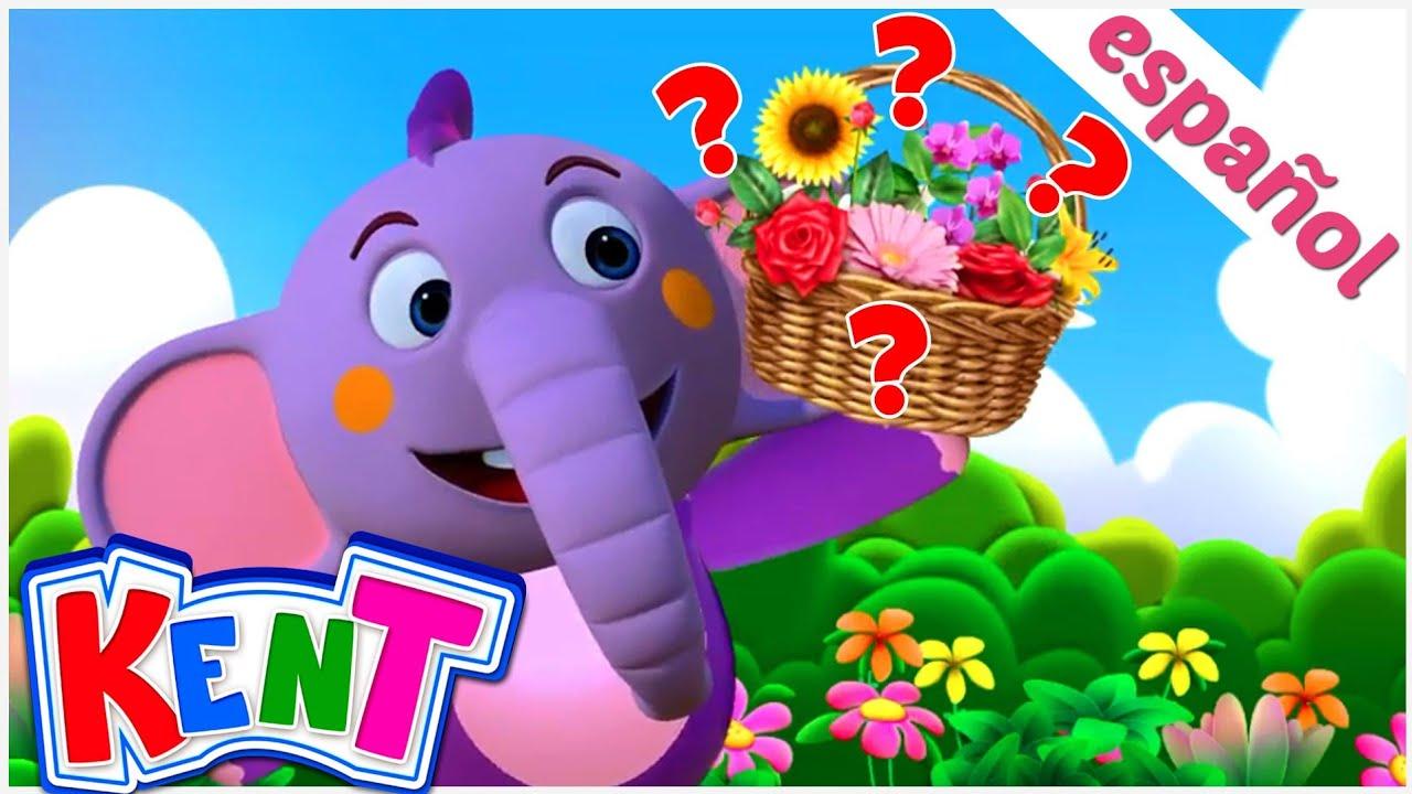 Aprenda diferentes tipos de flores | Kent el Elefante