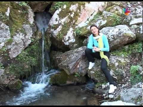 Tara - izvor Lađevac