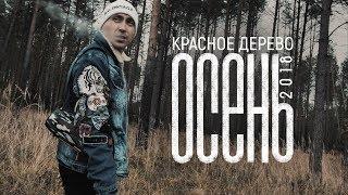 """Красное Дерево """"Осень 2018"""""""