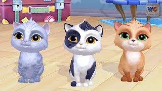My Cat! - Pet Game - Choose Your Pet Cat