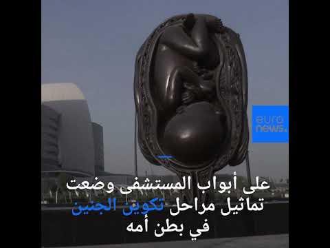 تماثيل -الرحلة المعجزة- على أبواب مستشفى سيدرا في الدوحة  - نشر قبل 24 دقيقة