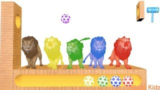 Learn Colors with LIONS Surprise Soccer Balls #h Magic Liquids for Children Toddlers