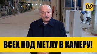 Всех под метлу в камеру! Лукашенко жестко прокомментировал «сахарное» дело