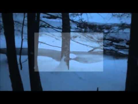 IDNL. ft  Julie Mouchel - Tristes Tropiques