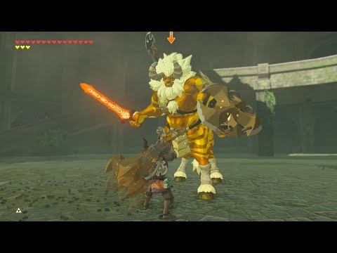 Phantom Link DESTROYS GOLD LYNEL - Zelda Breath of the Wild