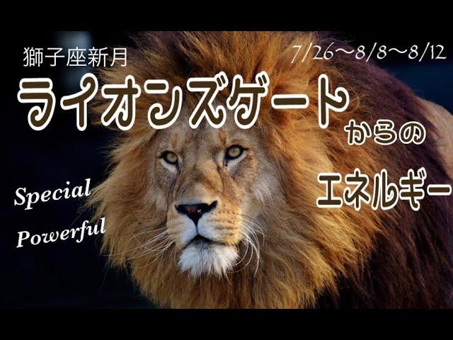 ライオンズゲートからのエネルギー✧【獅子座新月】2021年8月8日