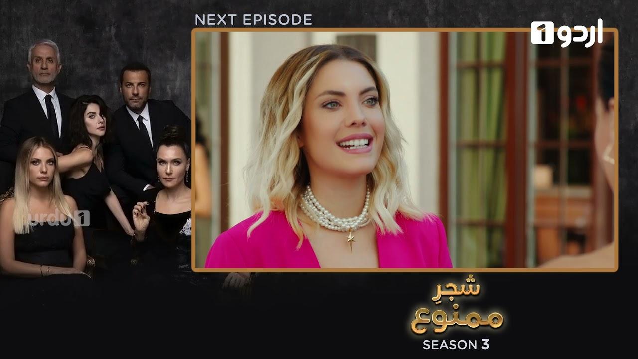 Shajar-e-Mamnu | Episode 206 Teaser |Turkish Drama| Forbidden Fruit |Urdu Dubbing| 22 September 2021