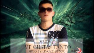 Download me gustas tanto-mr juan. prod by lince ft dj sog MP3 song and Music Video