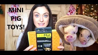 Mini Pig Toys - What To Buy Your Pig For Christmas