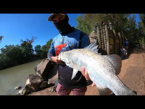 Crocodile VS Barramundi, NT OUTBACK FISHING